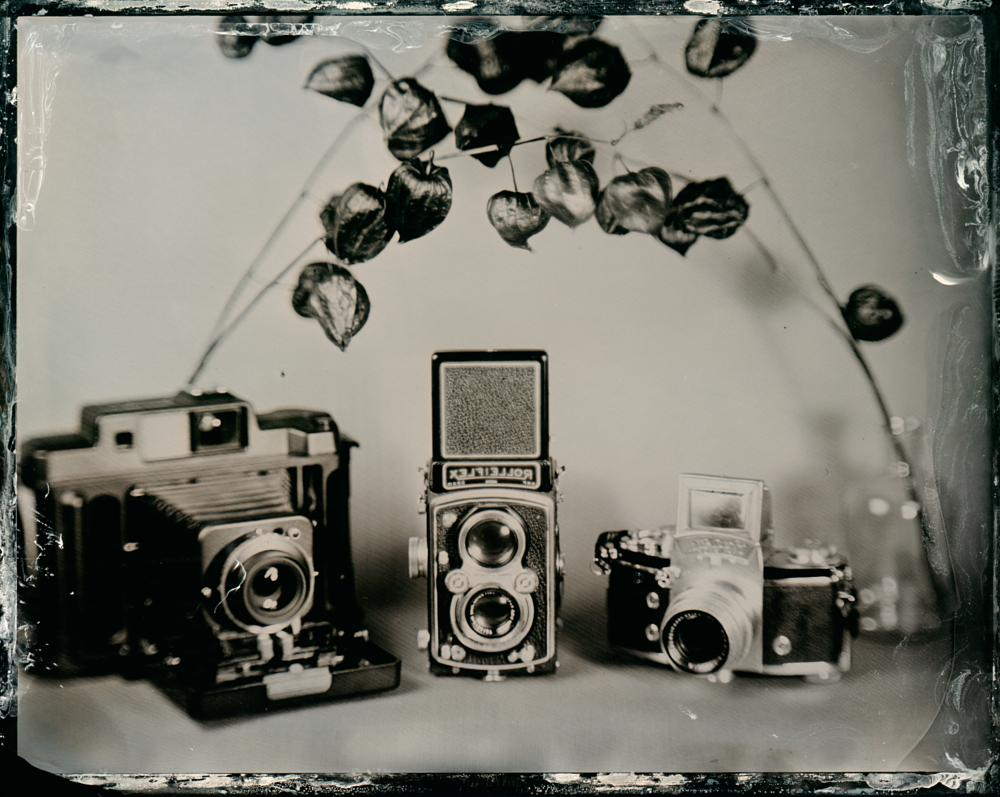 Photo in Vintage #collodion #wet plate #tintype #vintage #analog #oldie #wetplate #quarter plate #chamonix