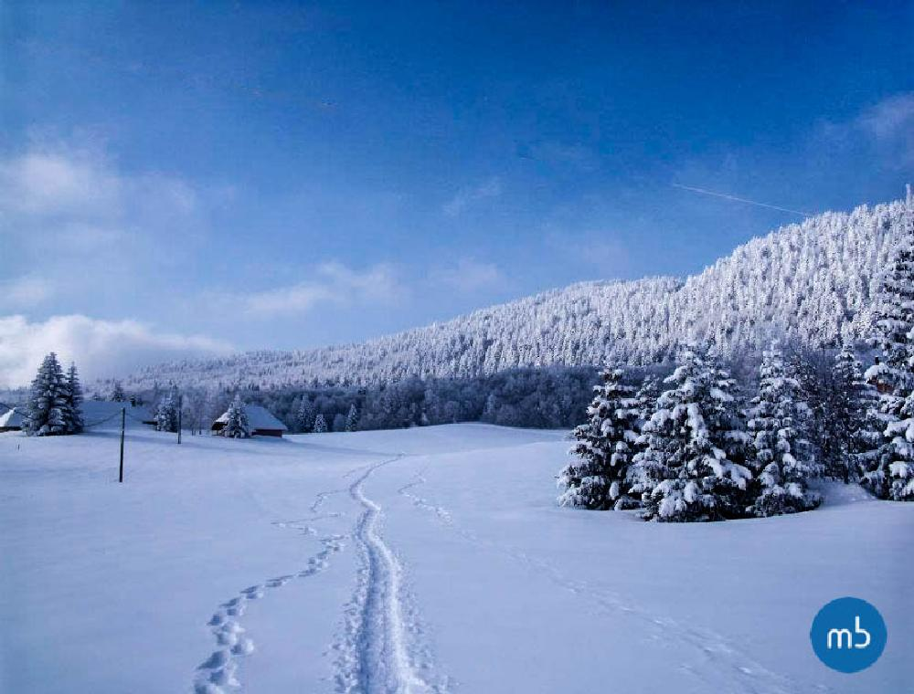 Photo in Nature #savoie #paysage #photo #neige #snow #froid