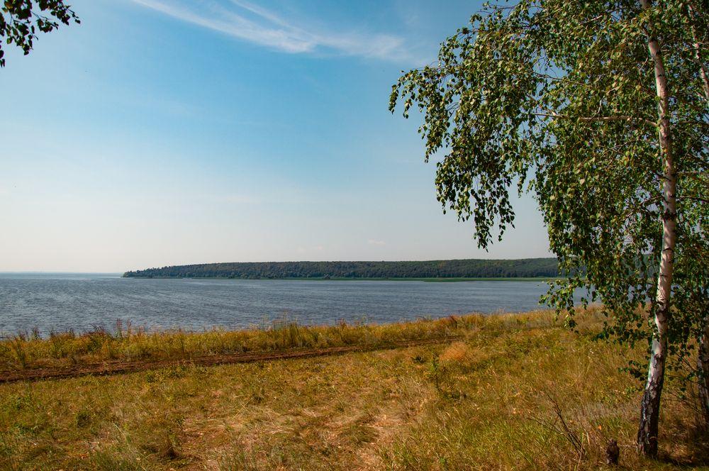 Photo in Random #river #birch #sky #forest