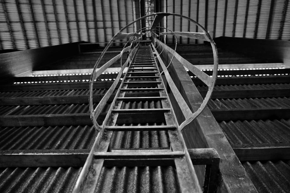 Photo in Black and White #bergbau #leiter #kohle #ruhrgebiet #kunst