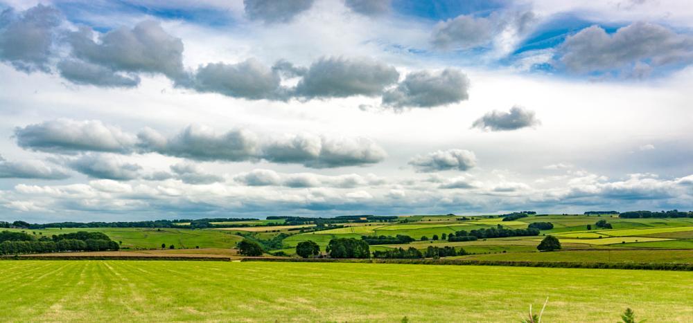 Photo in Landscape #landscape #derbyshire #nature #wildlife