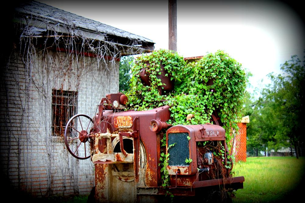 Photo in Landscape #old implents #back roads finds #equipment