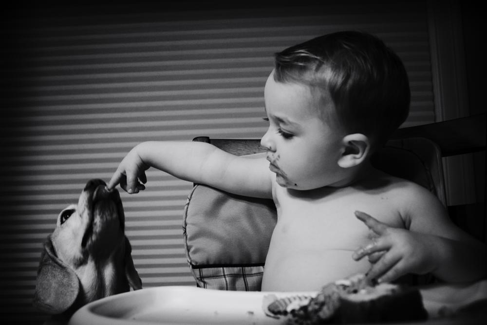 Photo in Fine Art #child #baby #infant #dog #pet #cute #relationship #black #white #art #artistic #altered #scene #youth #home