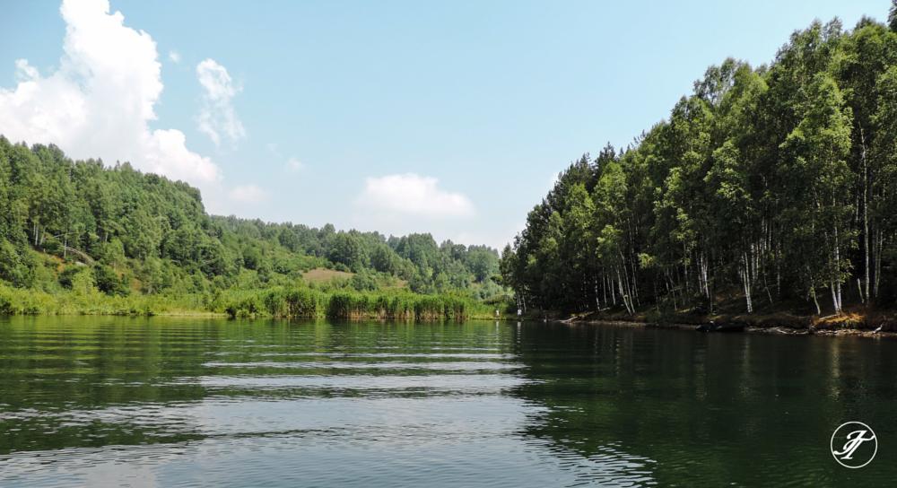 Photo in Random #lake #island #floating island #water #green #birch #summer