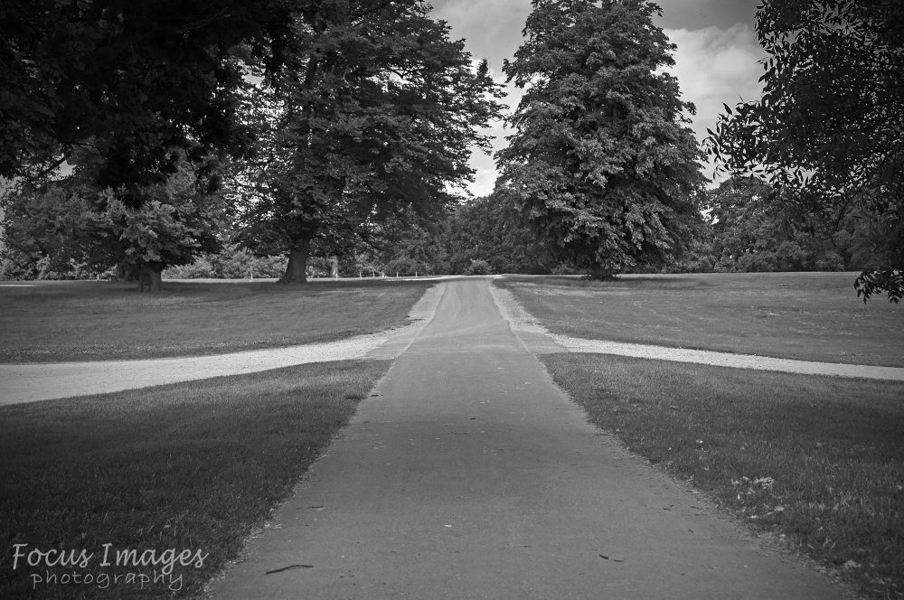Photo in Black and White #stamford #burghley #house