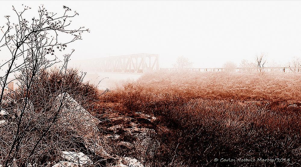 Photo in Landscape #niebla #puente #ferrocarril