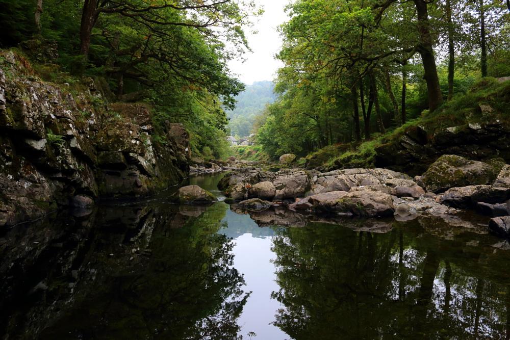 Photo in Nature #betws-y-coed #afon #llugwy #river #stream #water #miner #bridge #wales #snowdonia #uk #united kingdom #mirror #reflection #forest #trees #autumn #rocks