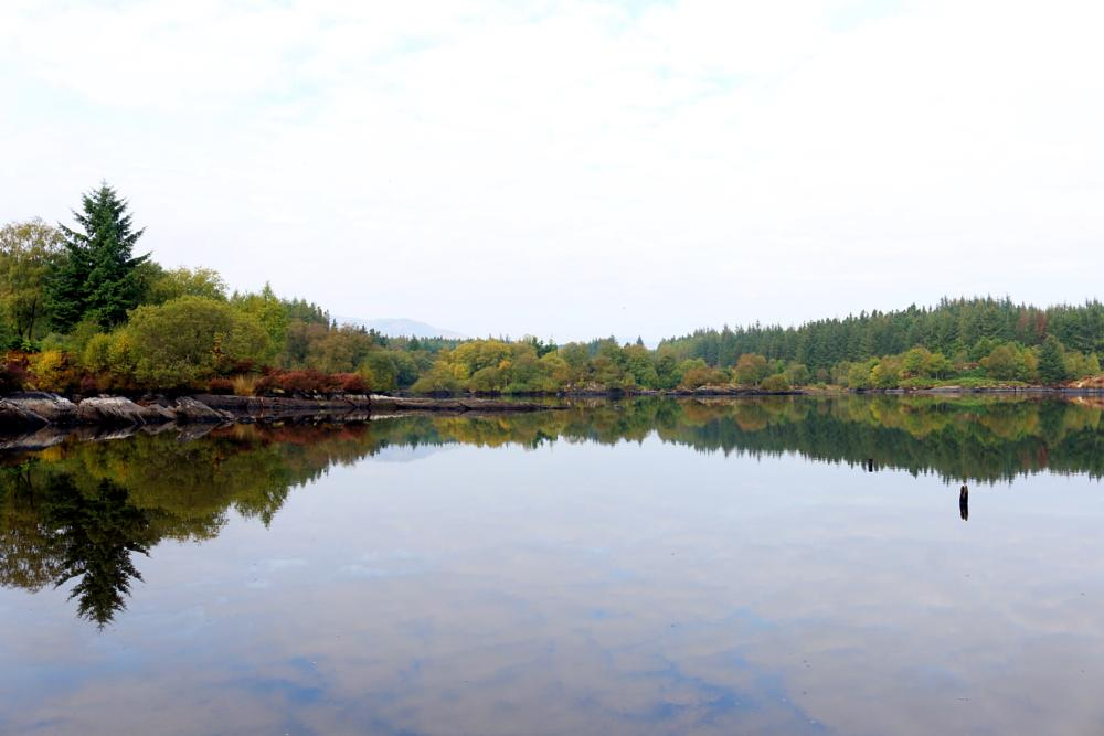 Photo in Landscape #llyn #elsi #betws-y-coed #snowdonia #wales #uk #united kingdom #lake #water #mirror #reflections #trees #mountains #hills #forests #walking #nature #travel #landscape #autumn