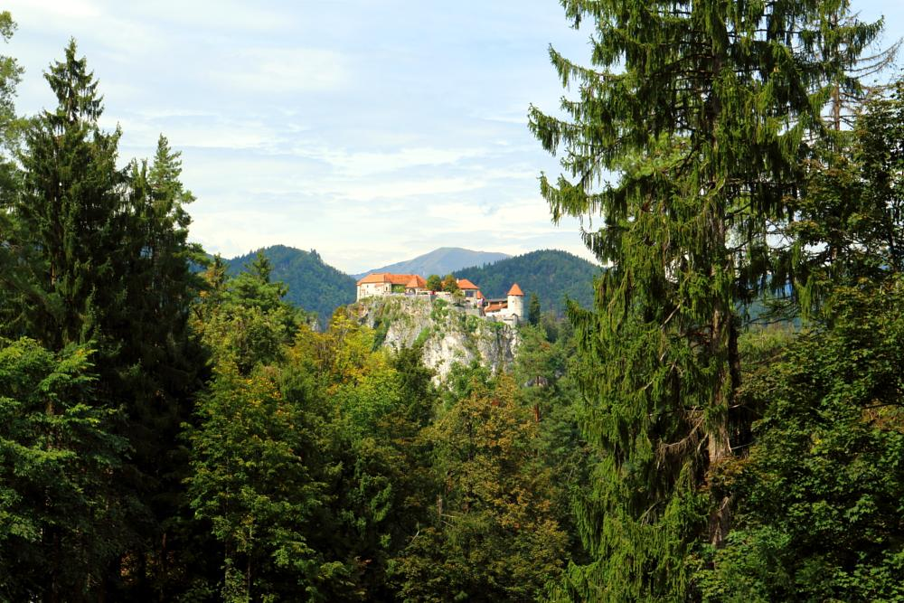 Photo in Travel #bled #slovenia #castle #mountains #hills #forests #trees #nature #landscape #travel #walking #summer
