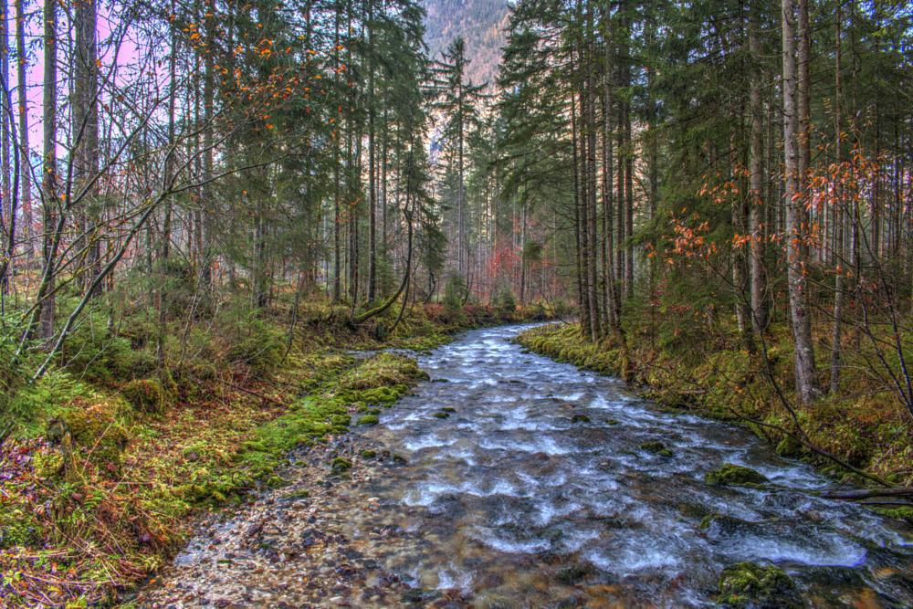 Photo in Nature #hdr #obertraun #hallstatt #salzburg #austria #forest #river #water #stream #cascade #waterfall #nature #travel #landscape #autumn #trees #fast