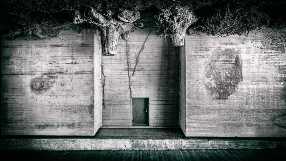 Photo in Black and White #world #upside #down #black #white #b/w