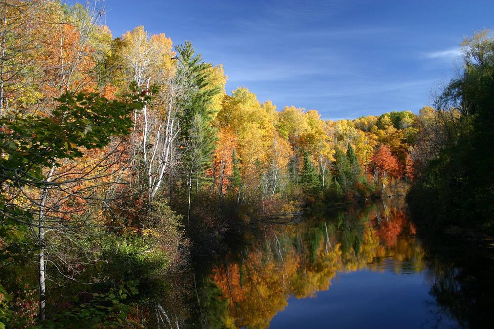 Photo in Landscape #landscapes #nature #scenery #fall colors
