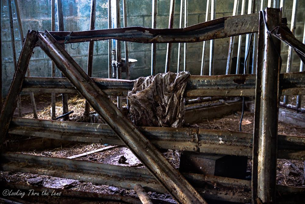 Photo in Rural #abandoned #rural exploration #architecture #farms #barns #low light #natural light #rural