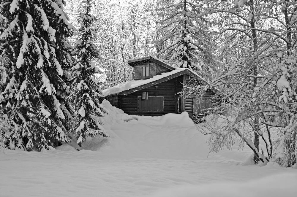Photo in Black and White #snow #italy #house