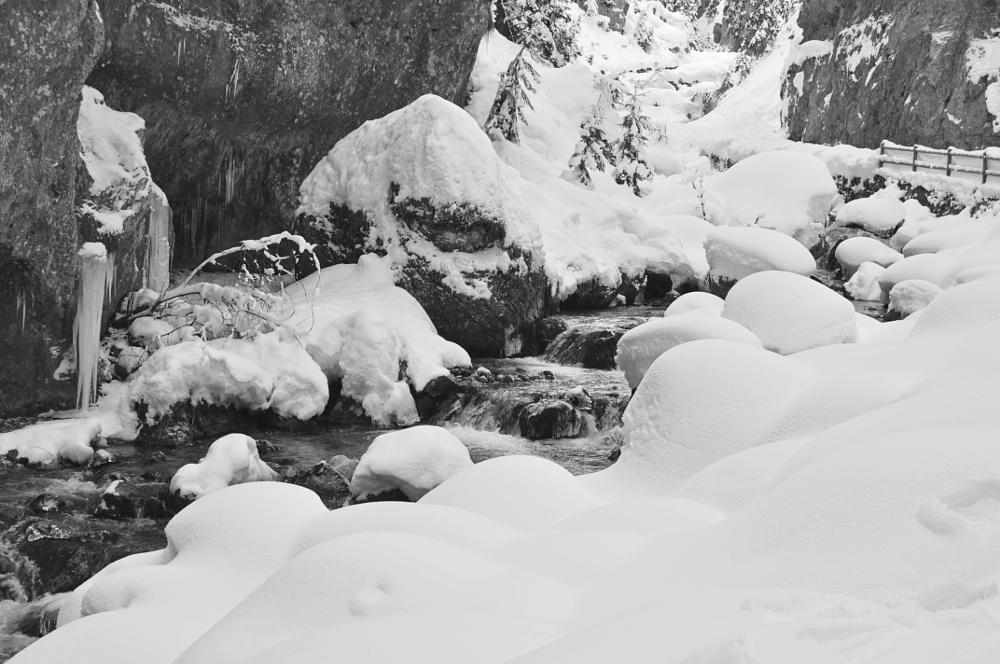 Photo in Black and White #snow #italy #serrai