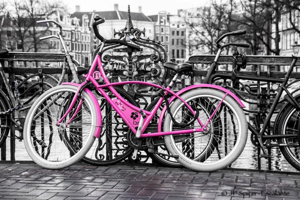 Photo in Cityscape #street #amsterdam #bike #pink