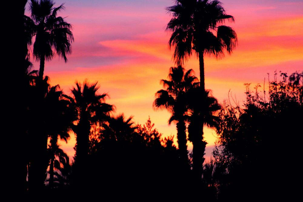 Photo in Landscape #sunsetfrompalmsprings
