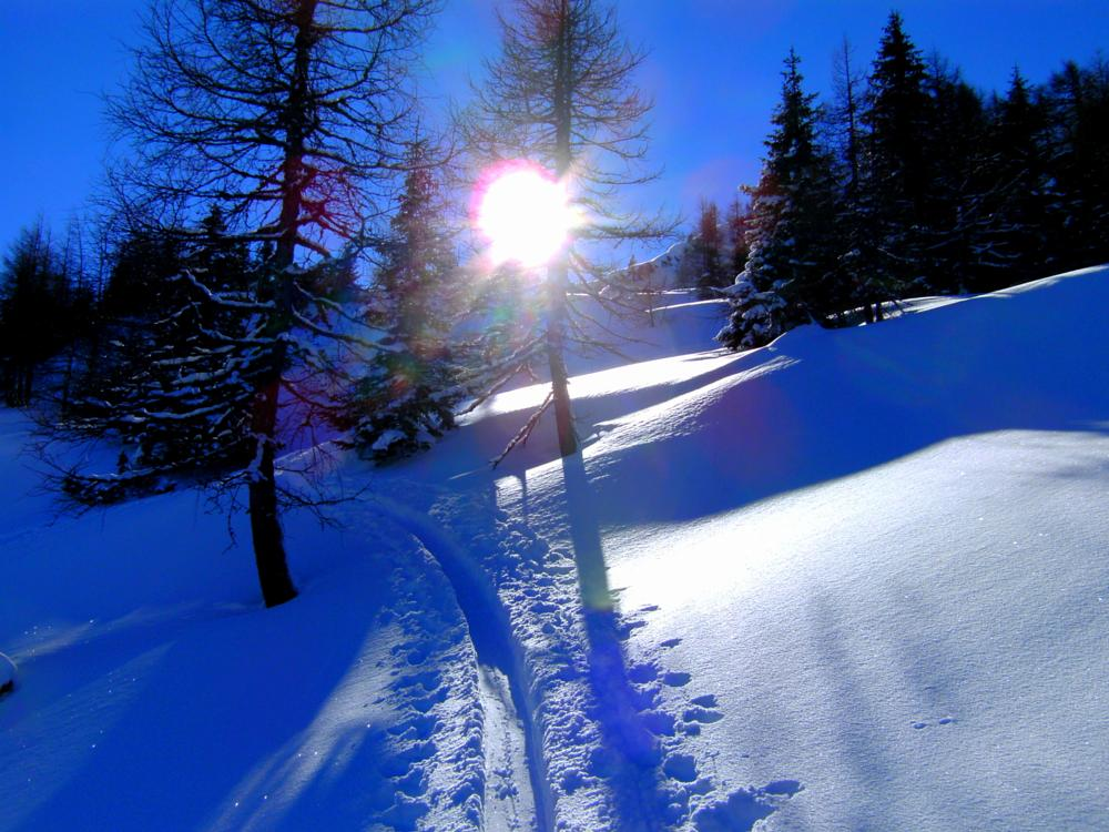 Photo in Landscape #winter #austria #snow