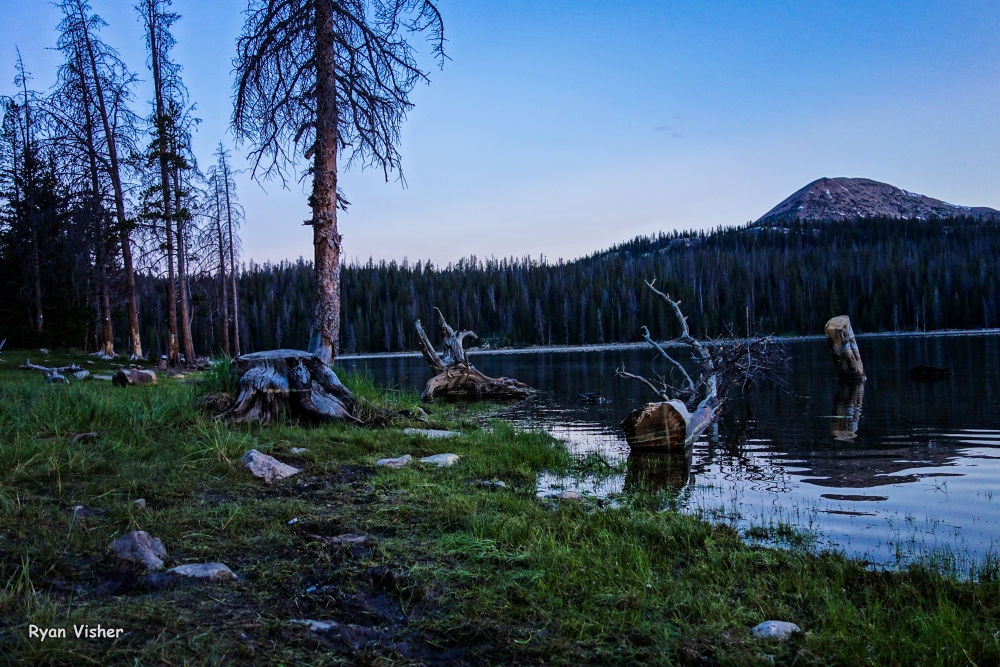 Photo in Nature #uintas #utah #trial lake #lake #calm #reflection #peacefull #tree #nature #landscape #ypa2013
