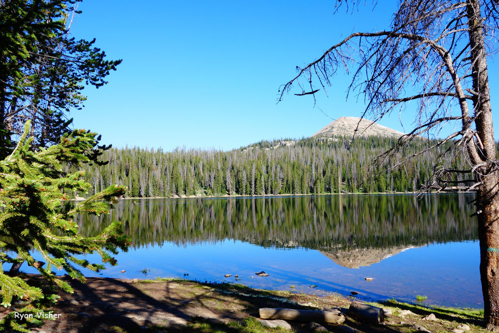 Photo in Nature #trial lake #uintas #reflection #pine trees #evergreen #lake #water #clear #nature #landscape #camping #utah #ypa2013