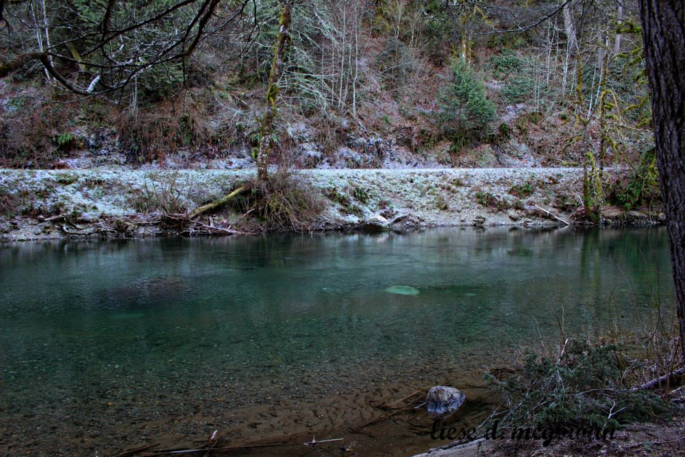 Photo in Nature #river #bluewater #winter