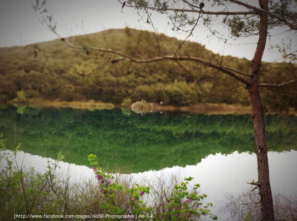 Photo in Nature #2013 #ypa2013 #river #nature #landscape