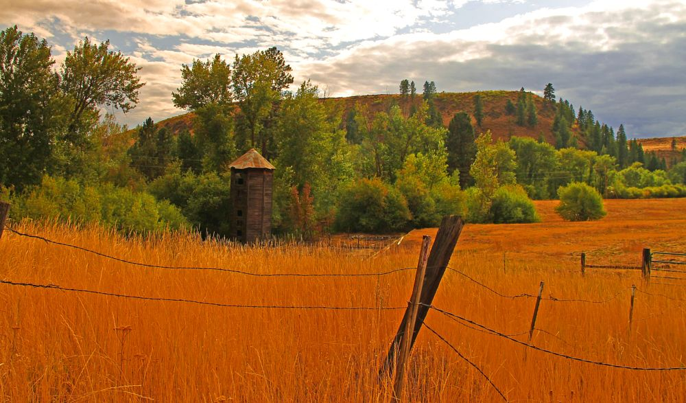 Photo in Rural #rural #countryside #country #landscape #silo #fall