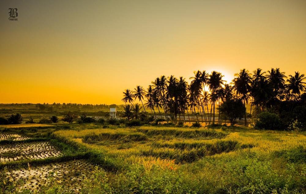 Photo in Landscape #beautiful #evening #sunset
