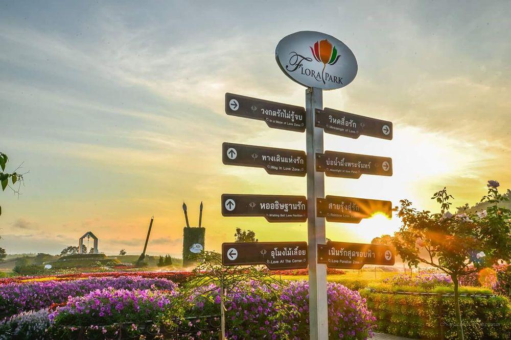 Photo in Landscape #thailand #korat #wangnamkeaw #flora park #nopiwongsuwan
