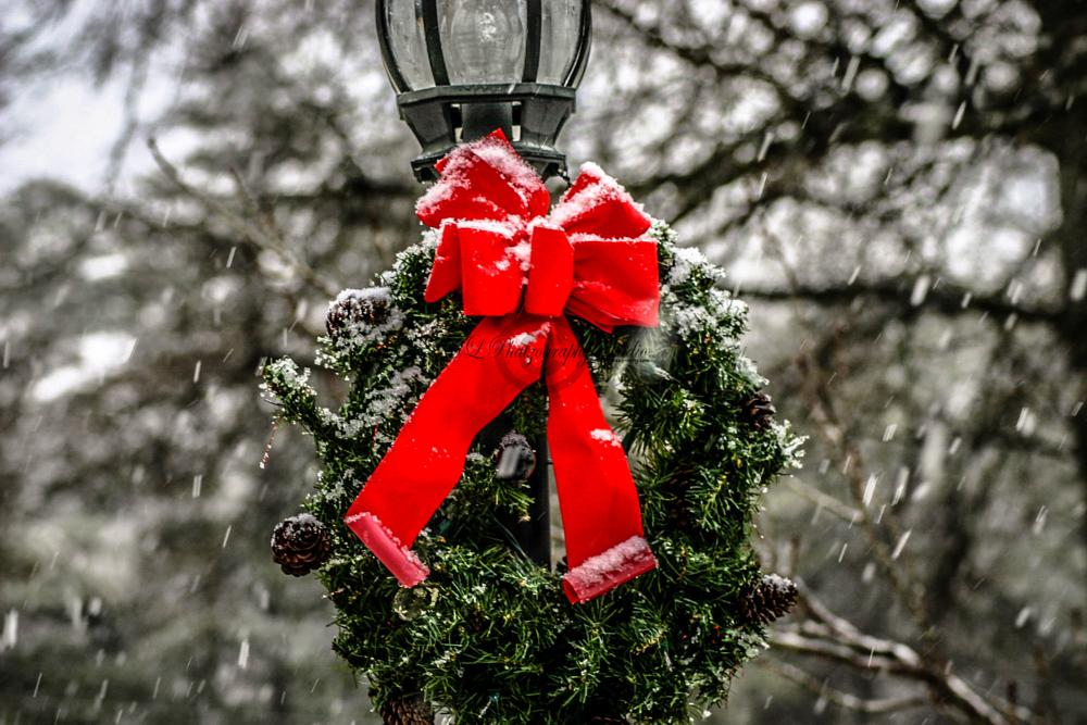 Photo in Still Life #snow #christmas #wreath #green #red