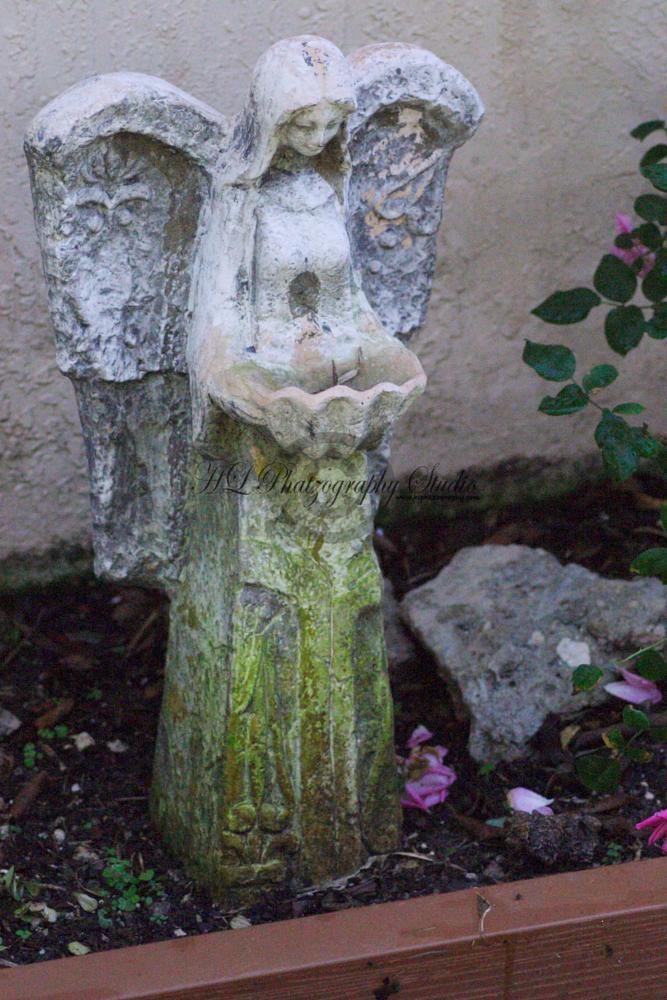 Photo in Still Life #guardian #garden #angel #figurine