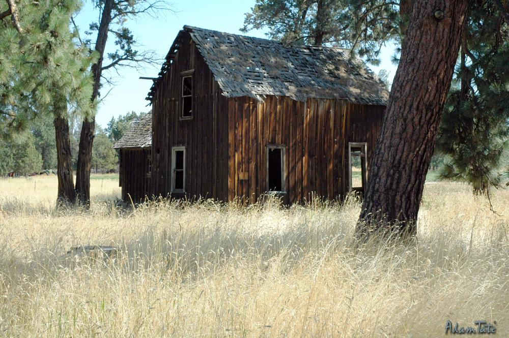 Photo in Architecture #barn #summer #high desert