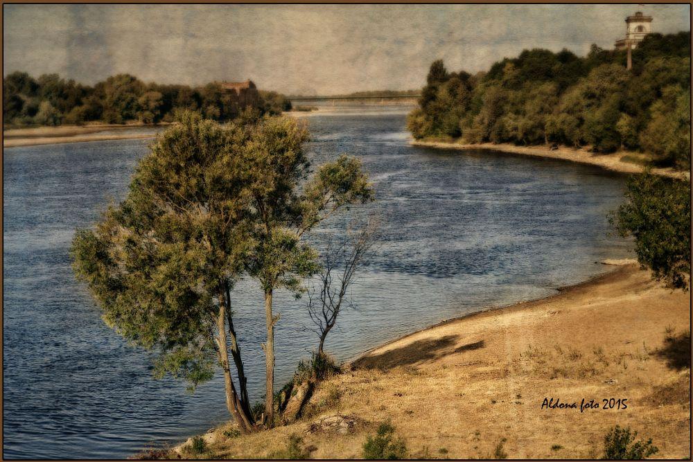 Photo in Landscape #river tree