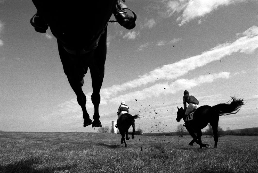 Photo in Sports #horse sports steeplechase po
