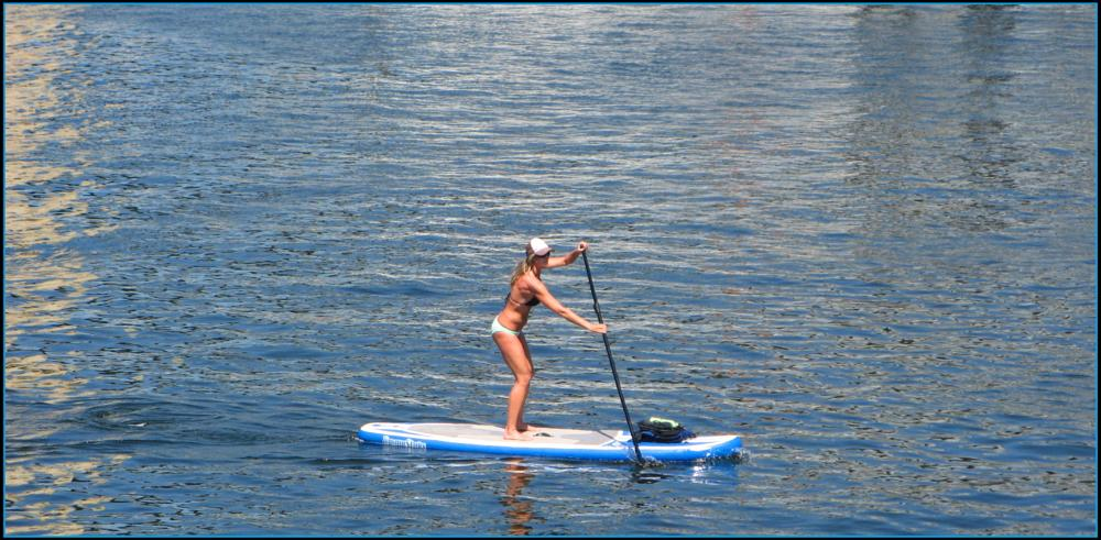 Photo in Sports #paddle boarding #sport #sports #water sports #surf #outdoors #water #sea #vancouver #canada
