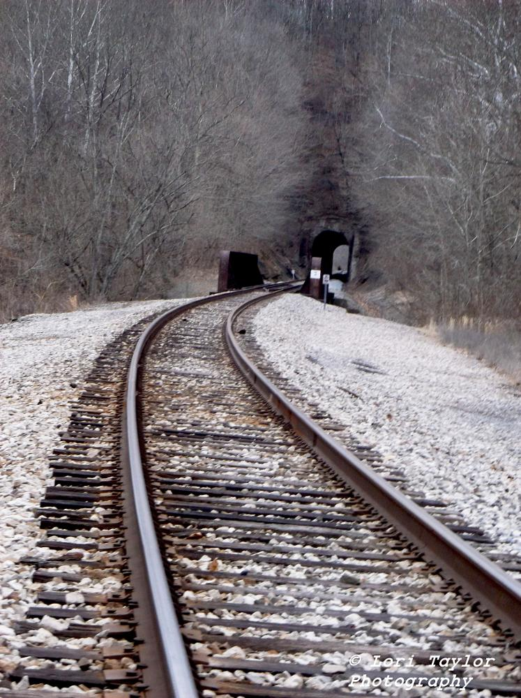Photo in Industrial #train #tracks #tunnel #photography