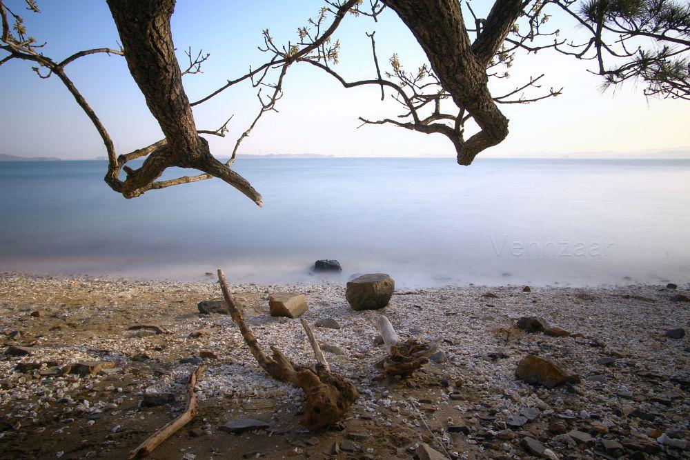 Photo in Landscape #bay #sea #sky #tree #stones #light
