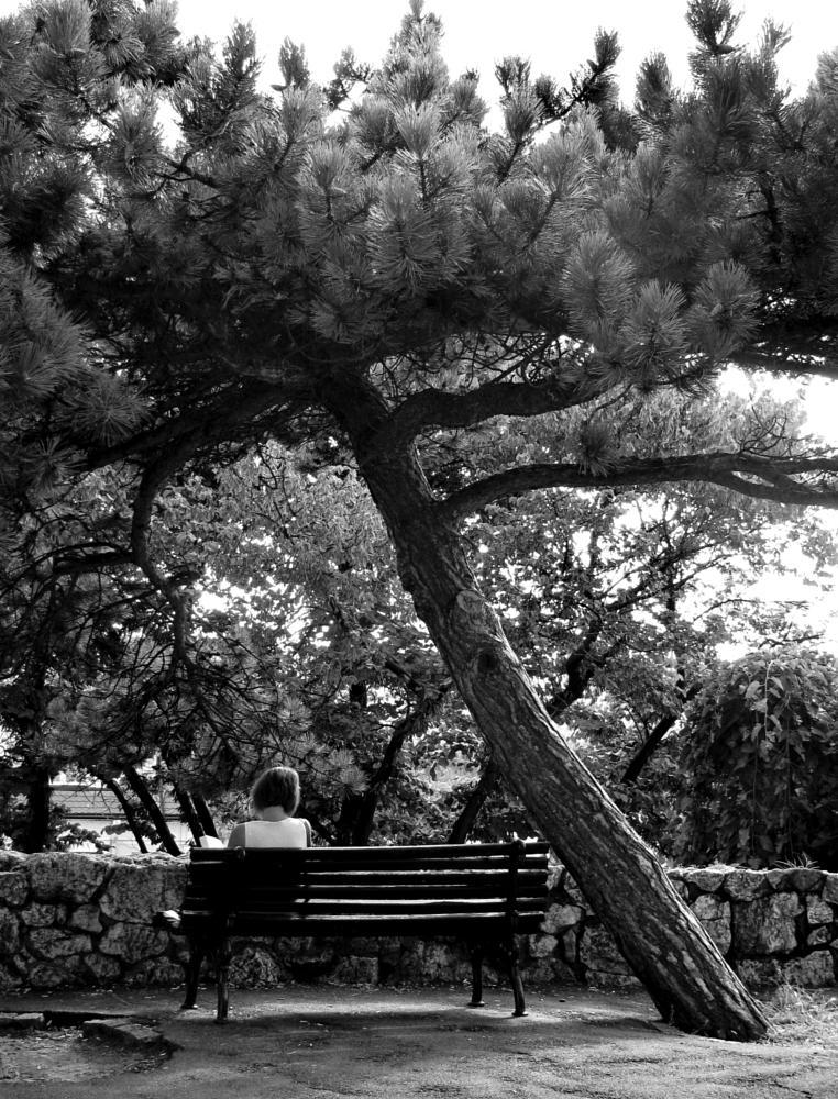 Photo in Black and White #woman #tree #bench #black and white #sitting #belgrade #beograd #srbija #serbia #kalemegdan