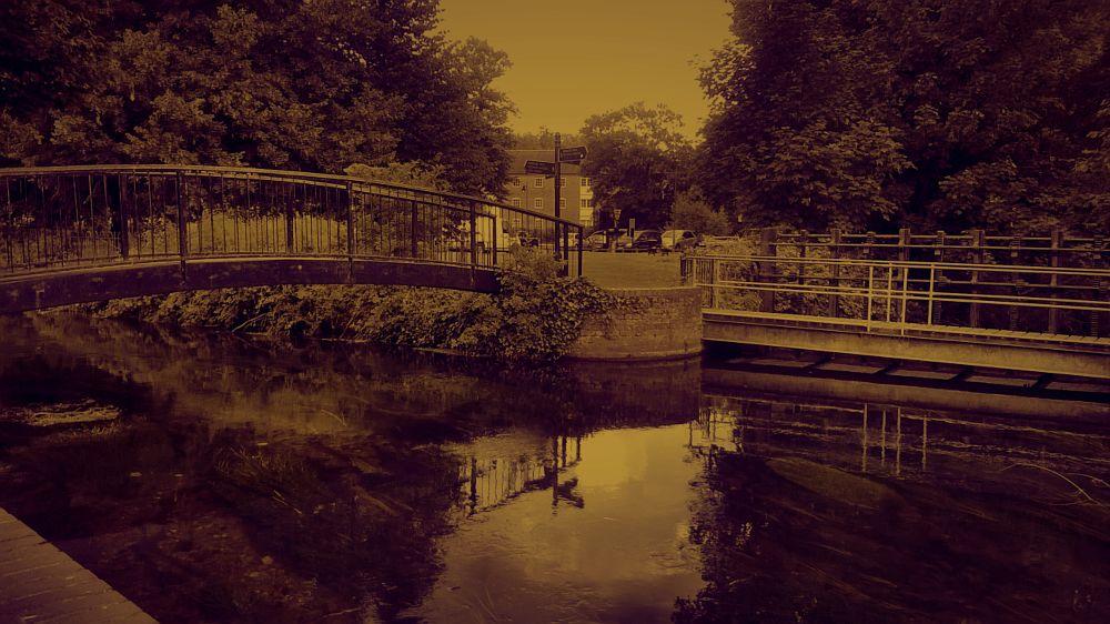 Photo in Cityscape #river #city #cityscape #water #bridge #nature #light #reflection