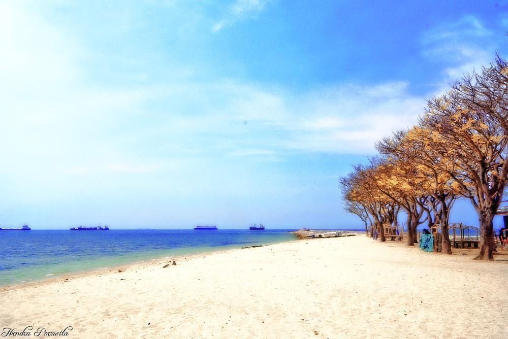 Photo in Sea and Sand #season #island #dry #beach #sea #seascape