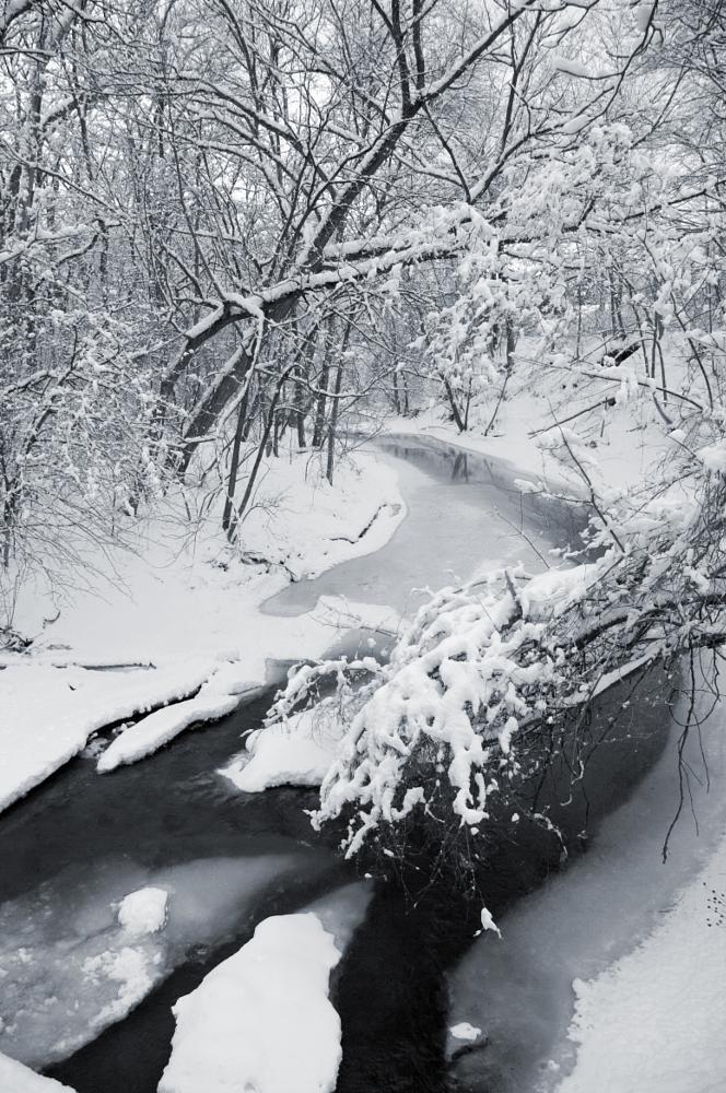 Photo in Nature #winter #snow #river