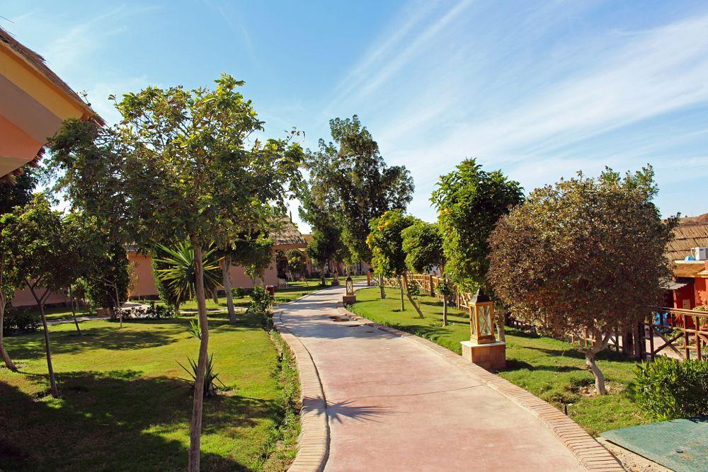 Photo in Travel #hurghada