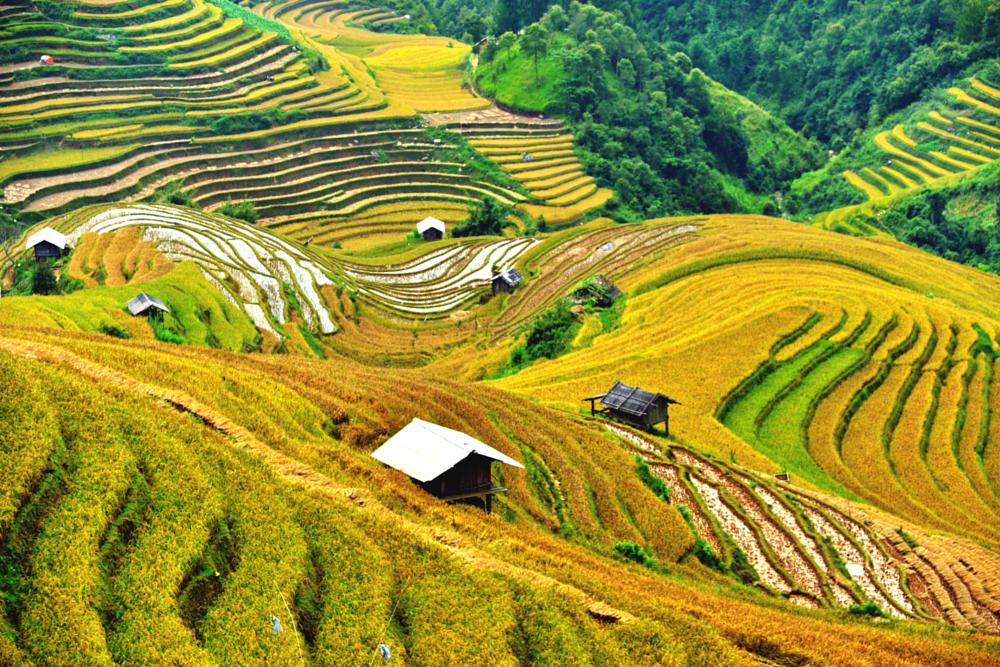 Photo in Landscape #mountain #rice fields #houses #nature #landscape #travel