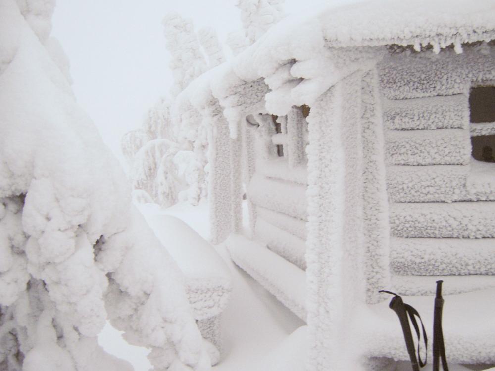 Photo in Landscape #finland #travel #winter #snow #kuusamo #lapland #cold #photo #freezing