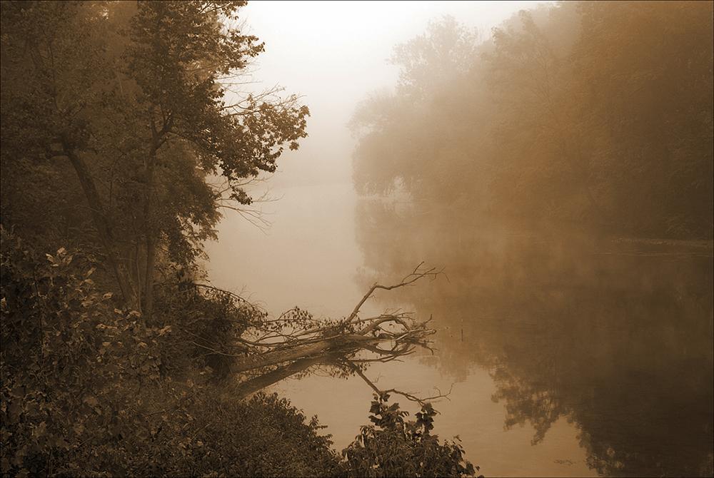 Photo in Landscape #creek #fog #fall #morning