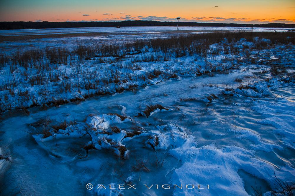 Photo in Landscape #freeze #frost #ice #snow #winter #cold #park #sunset #blues