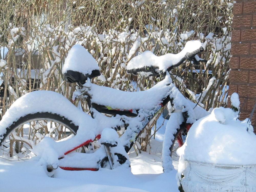Photo in Random #bike #snow