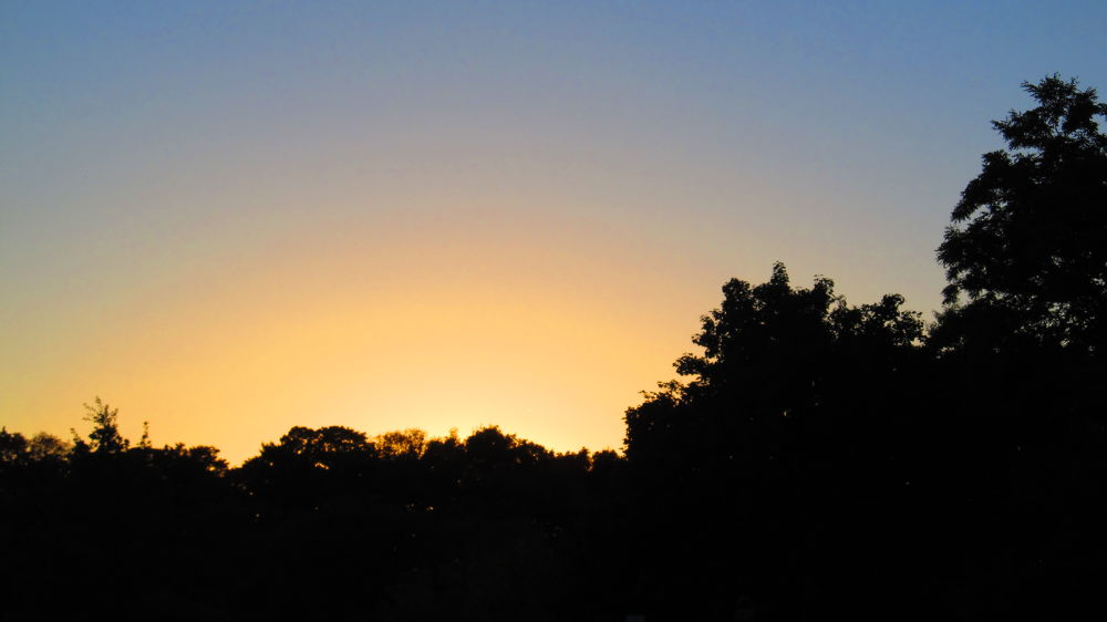 Photo in Random #sunset #sky #trees