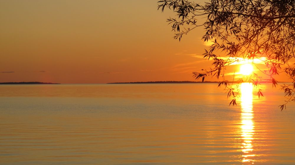 Photo in Nature #sunset #lake #tree