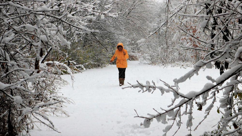 Photo in Family #season #snow #path